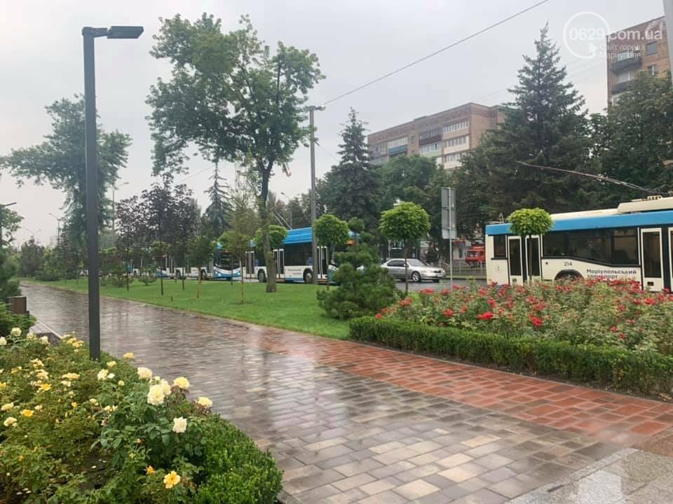 Почему в Мариуполе на проспекте Мира стояли троллейбусы, - ФОТО, фото-1