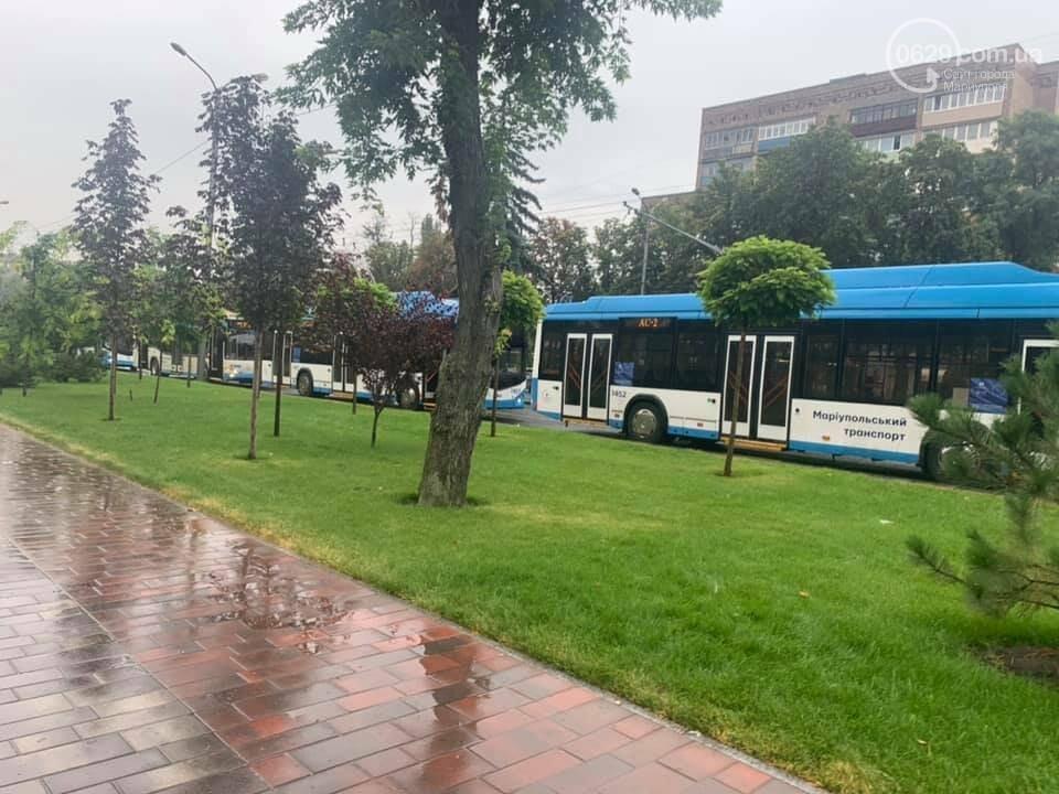 Почему в Мариуполе на проспекте Мира стояли троллейбусы, - ФОТО, фото-4