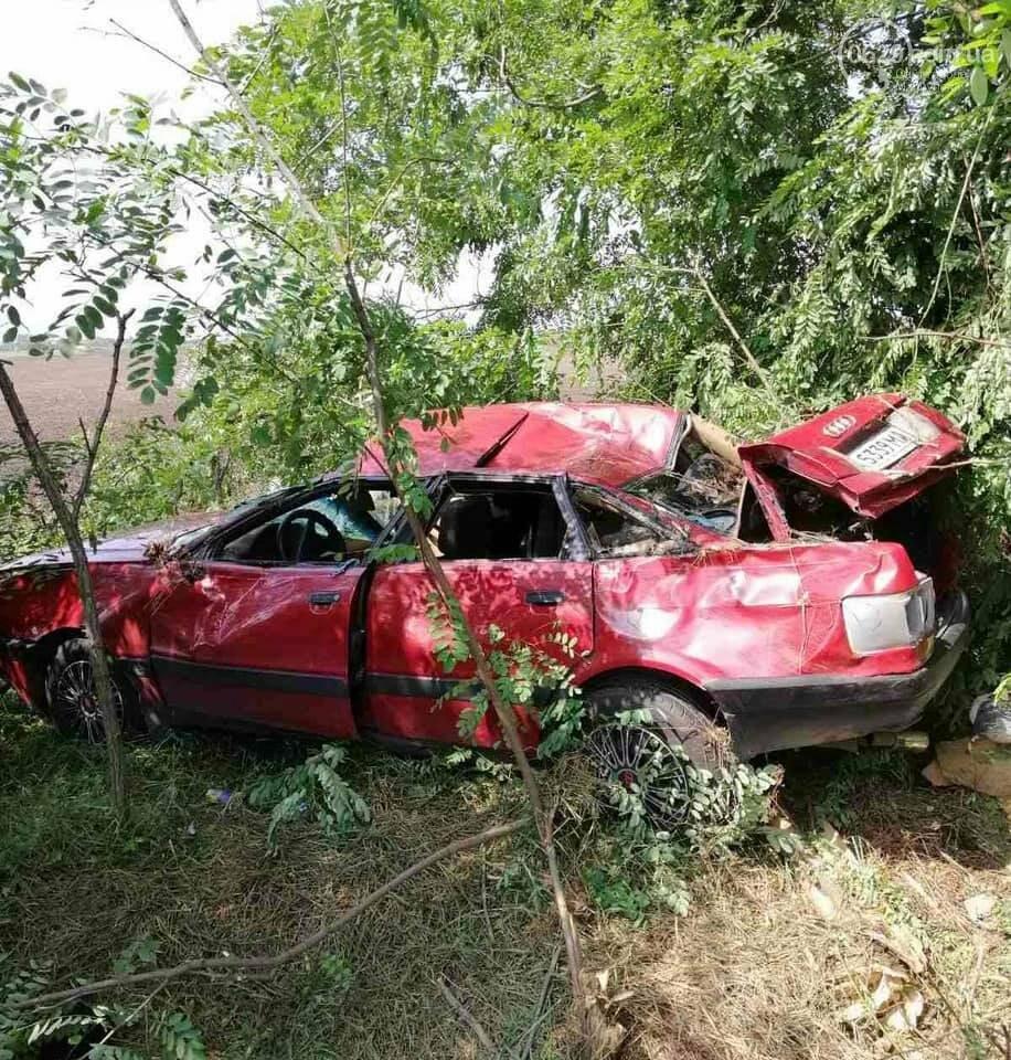 Под Мариуполем автомобиль Audi перевернулся и вылетел в кювет,- ФОТО, фото-1