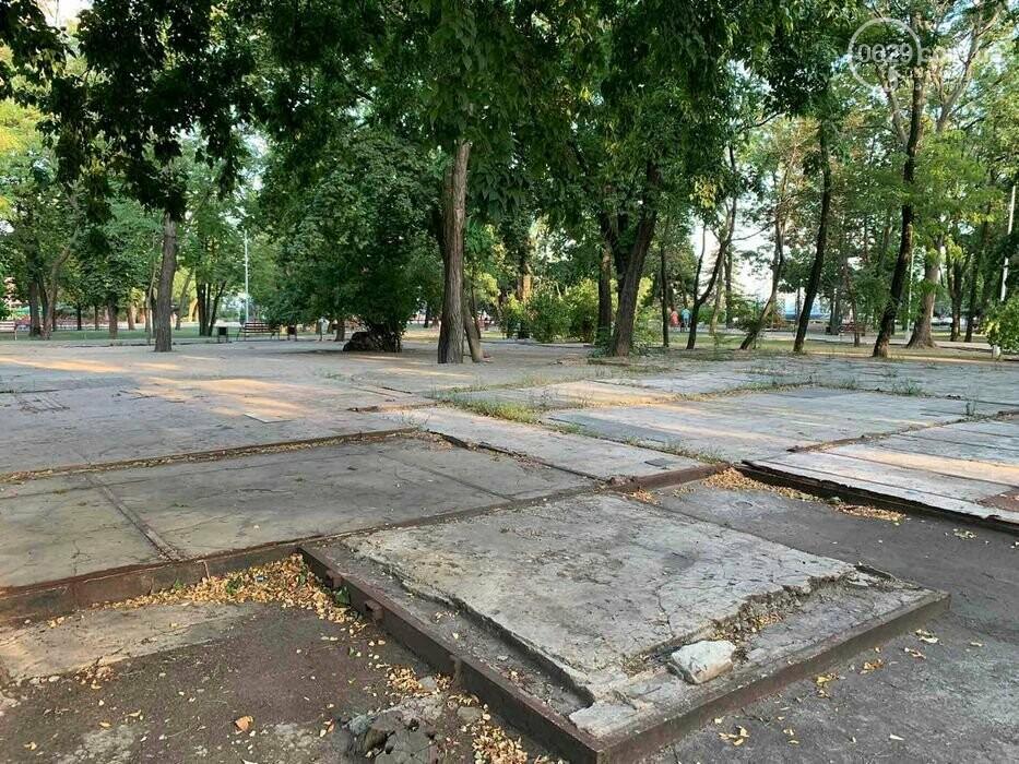 В Городском саду в Мариуполе выставили на продажу лакомый кусок земли, - ФОТО, фото-3