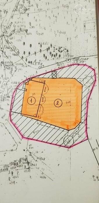 В Городском саду в Мариуполе выставили на продажу лакомый кусок земли, - ФОТО, фото-6