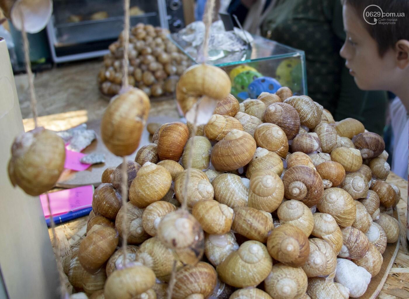 В центре Мариуполя открылся фермерский фестиваль,- ФОТОРЕПОРТАЖ, фото-18