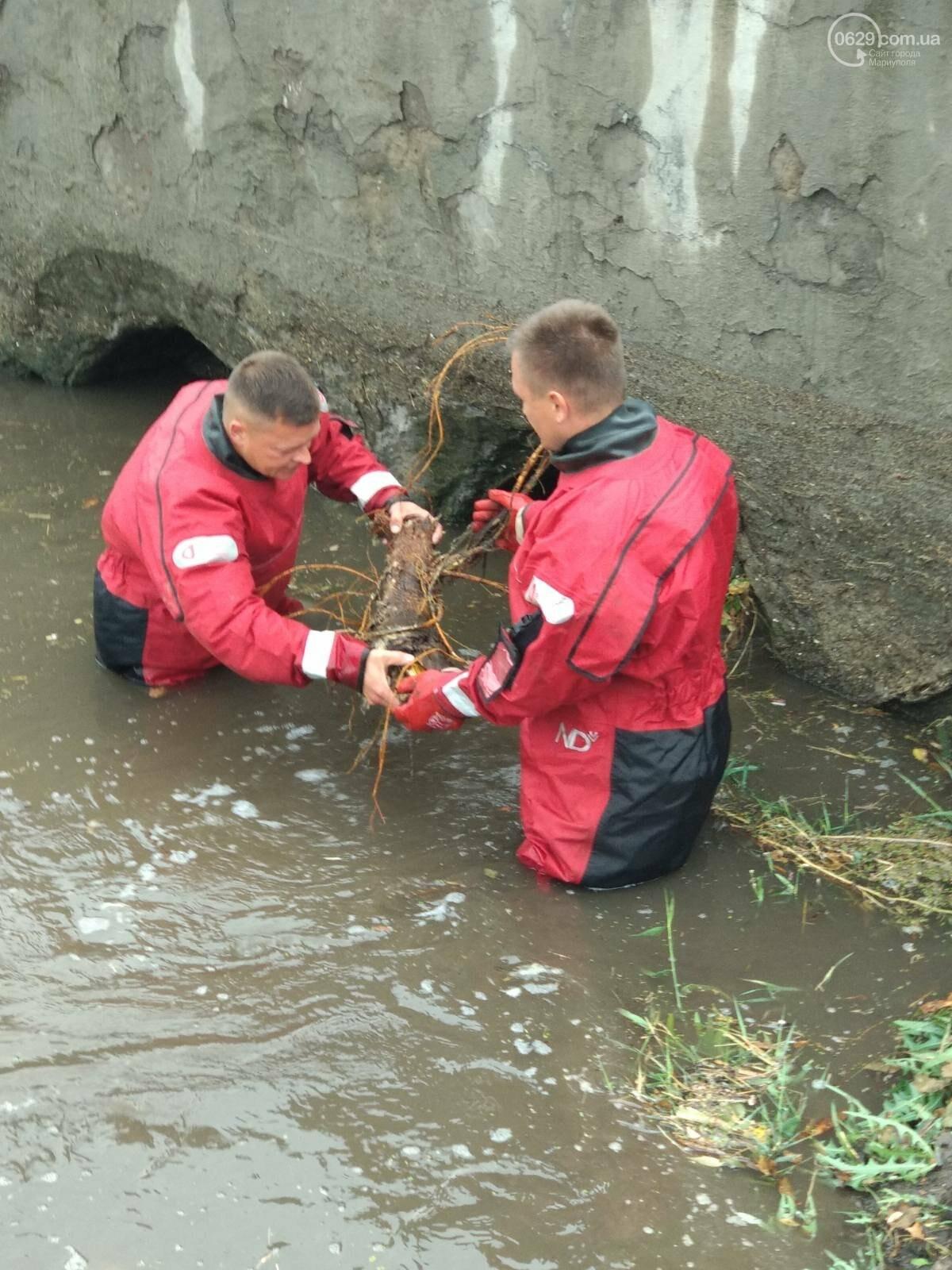 Как в Мариуполе откачивали воду из ливневок, - ФОТО, фото-3