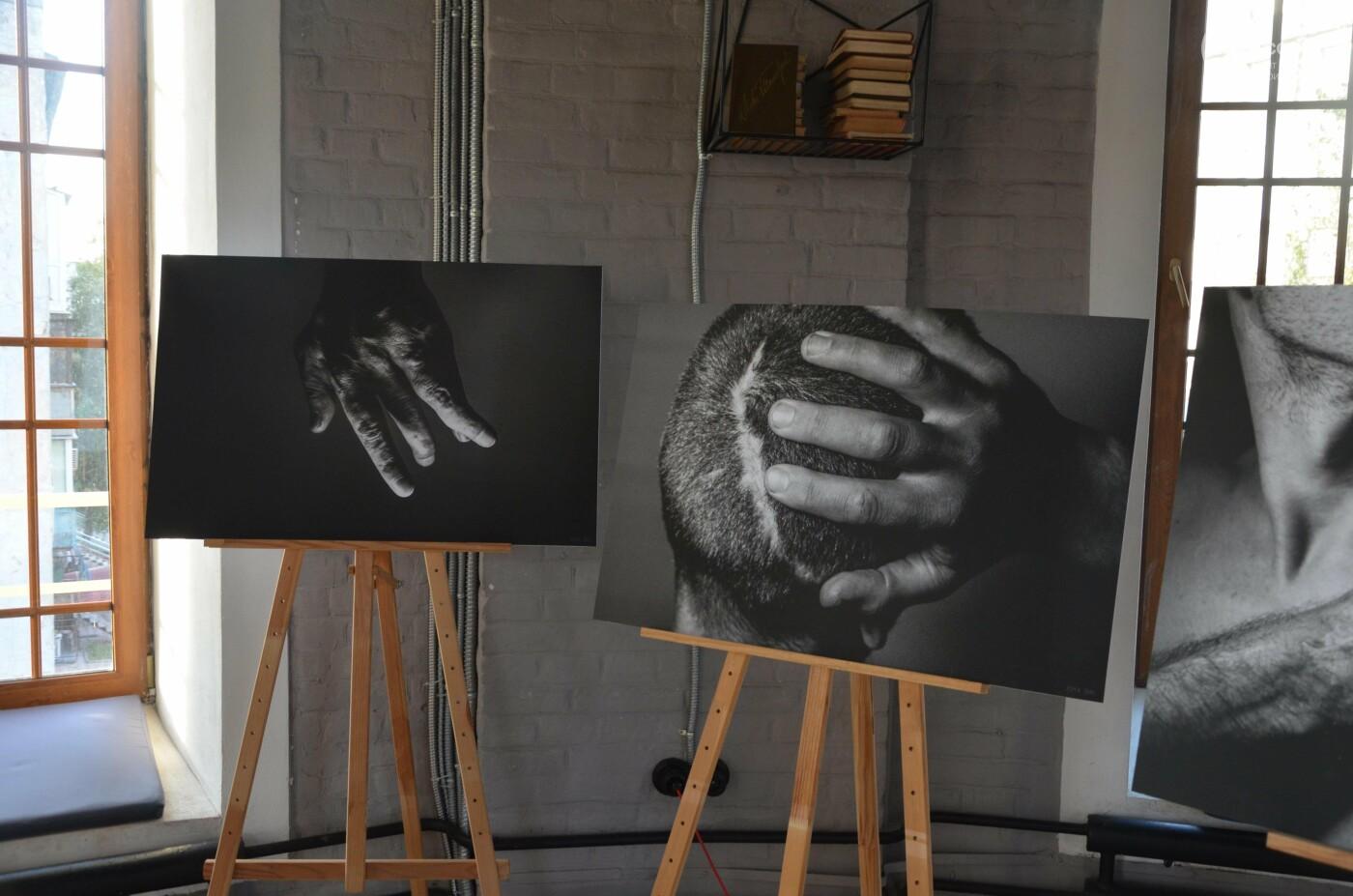 """""""Раны каждого из нас"""". В Мариуполе открылась выставка """"Целостность"""" , - ФОТОРЕПОРТАЖ, фото-3"""
