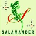 Окна Песня... SALAMANDER - эталон качества и надёжности. Vikna Land Brokelman (B-58, B-70)