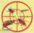 Уничтожение тараканов,крыс,мышей,клопов,мух,блох,ос,муравьев,клещей,комаров в квартирах и домах Мариуполя