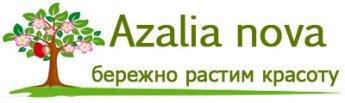 Логотип - ООО Азалия Нова , большой садовый центр