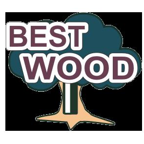 Логотип - Салон дверей «Bestwood», ламинат, металлопластиковые окна и двери, жалюзи,плинтуса,дверная фурнитура
