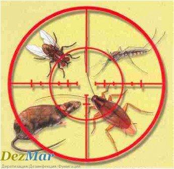 Логотип - Уничтожение тараканов, крыс, мышей,клопов, мух, блох, ос, муравьев, клещей, комаров «Dezmar»