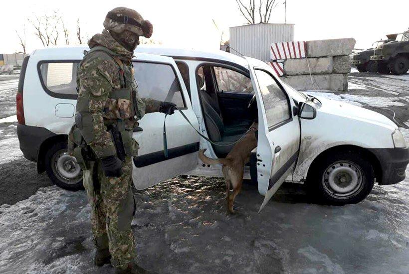 На блокпосту под Мариуполем служебный пес обнаружил в автомобиле 25 патронов (ФОТО), фото-1