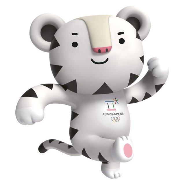 Сегодня стартуют  XXIII Зимние Олимпийские игры, фото-2