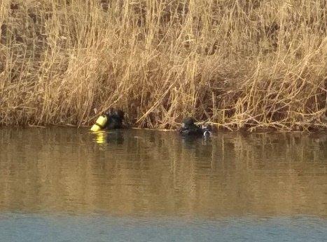 Мариупольские спасатели достали из реки Кальчик почти полкубометра мусора, фото-2