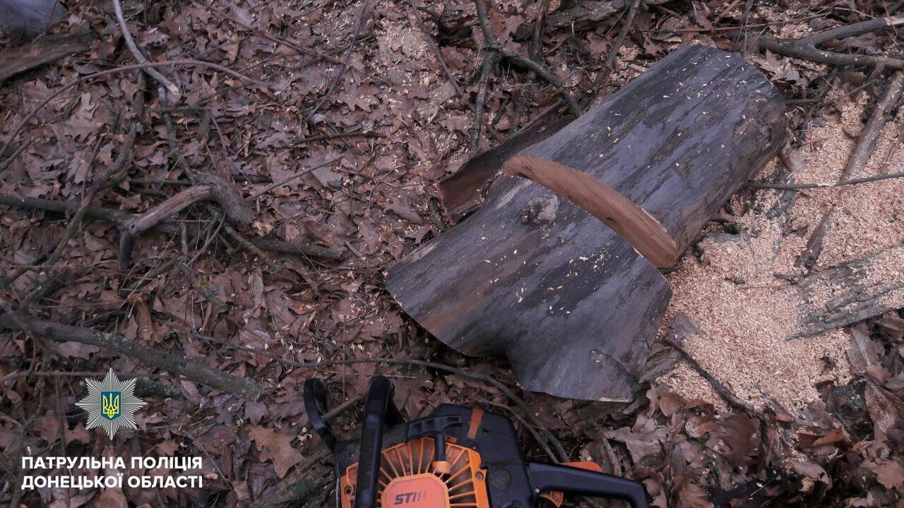 """Под Мариуполем в лесополосе задержали """"черных лесорубов"""" (ФОТО), фото-4"""
