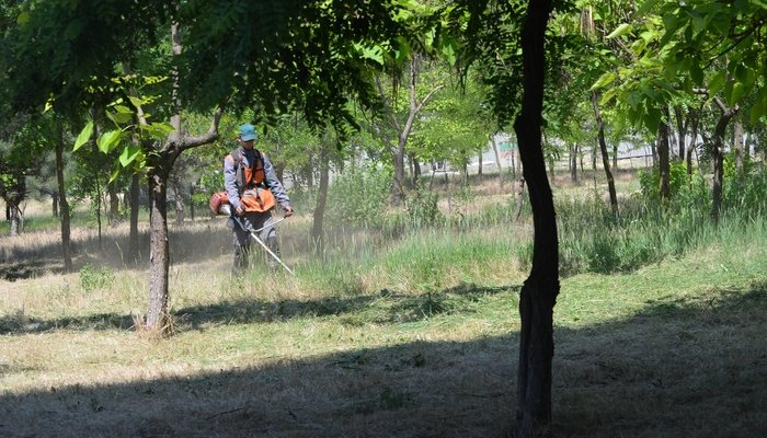В Мариуполе для безопасности каждый день косят по 15 гектаров травы, - ФОТО, фото-3