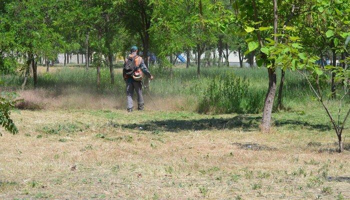 В Мариуполе для безопасности каждый день косят по 15 гектаров травы, - ФОТО, фото-2
