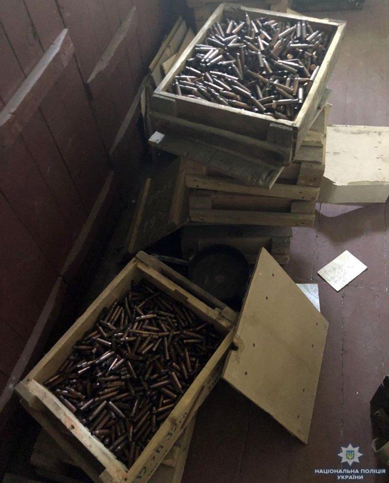 Винтовки, танковые стволы крупнокалиберного пулемета и сотни патронов. В поселке Каменск обнаружили арсенал оружия, - ФОТО, фото-1