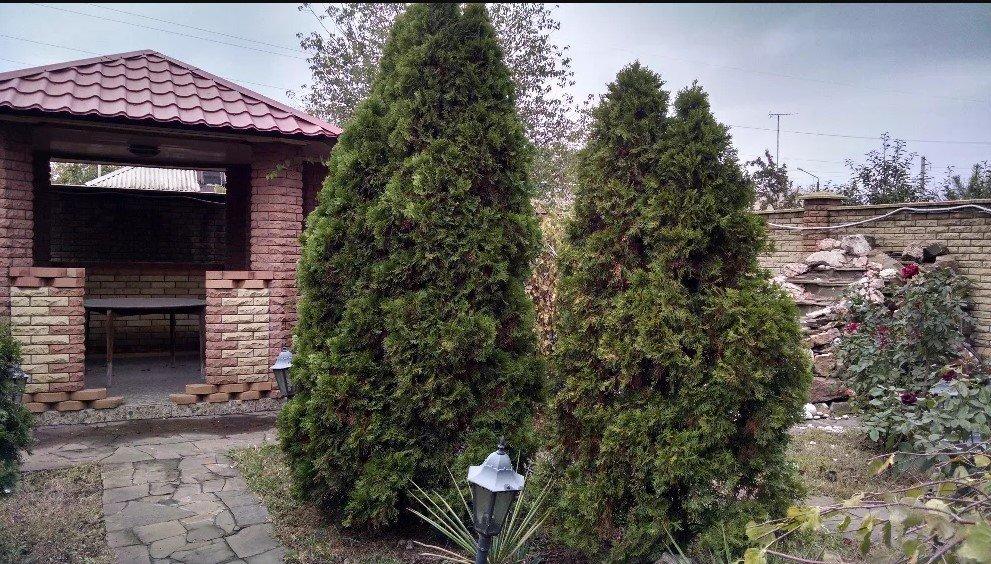 ТОП-7 самых дорогих домов Мариуполя, фото-2