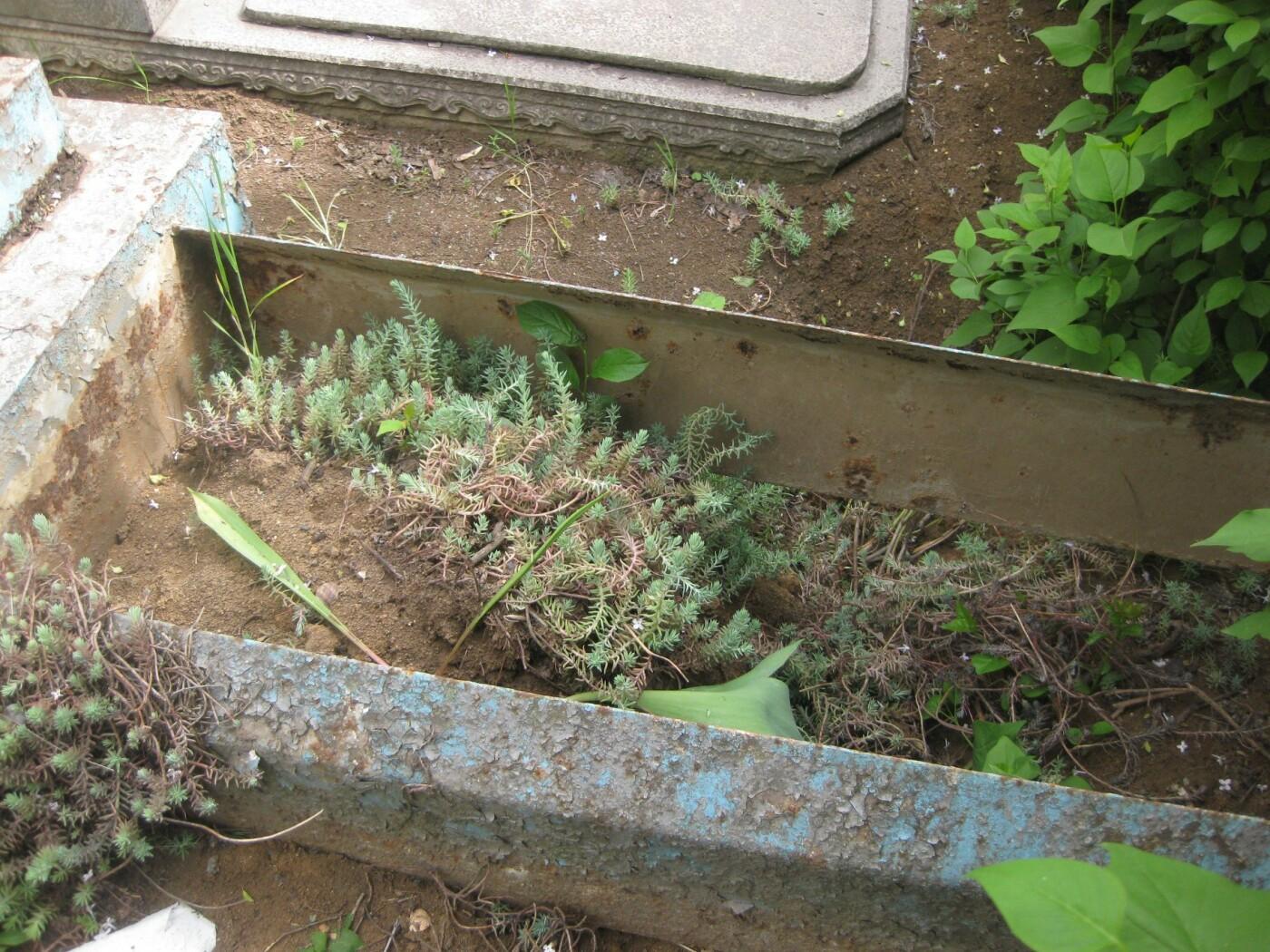 На мариупольском кладбище вандалы разрушили памятники, - ФОТОФАКТ, фото-6
