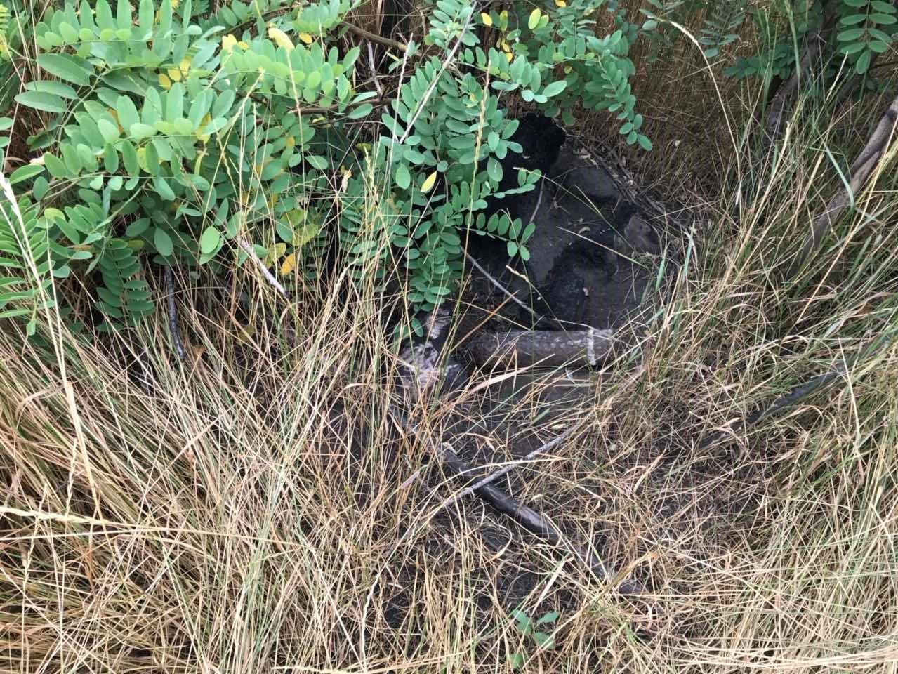 Мариуполец в посадке обнаружил 85-мм артснаряд, - ФОТО, фото-2