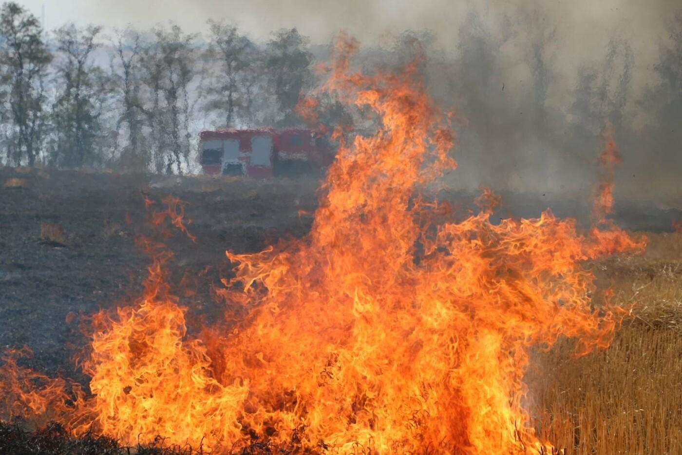 Пожар в Сопино