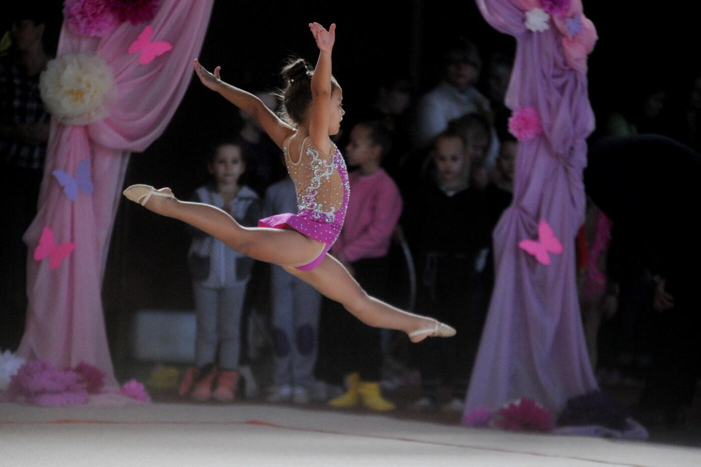 Мариупольцев приглашают на 9-й турнир по художественной гимнастике «Елизавета», фото-47