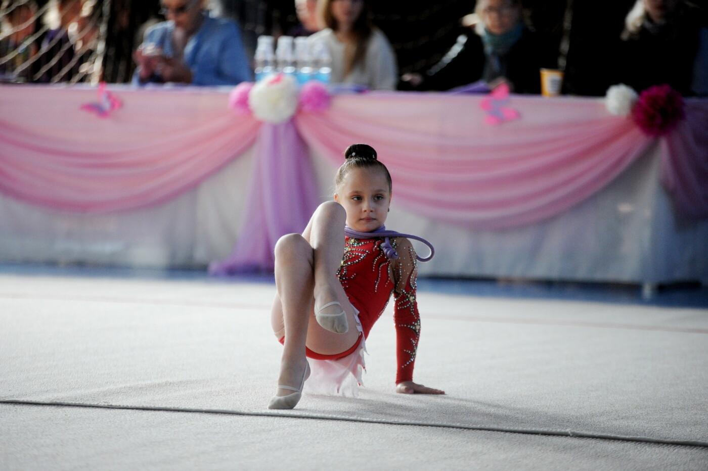 Мариупольцев приглашают на 9-й турнир по художественной гимнастике «Елизавета», фото-51