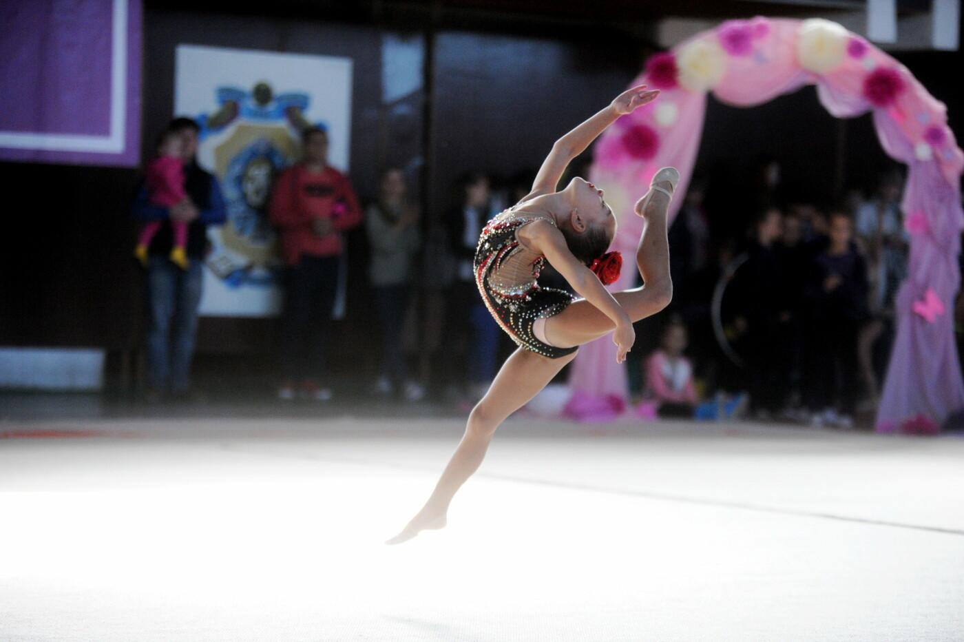Мариупольцев приглашают на 9-й турнир по художественной гимнастике «Елизавета», фото-53