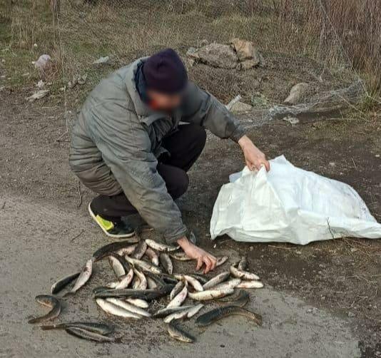В Мариуполе и поселках открыли охоту на рыбных браконьеров, - ФОТО, фото-2