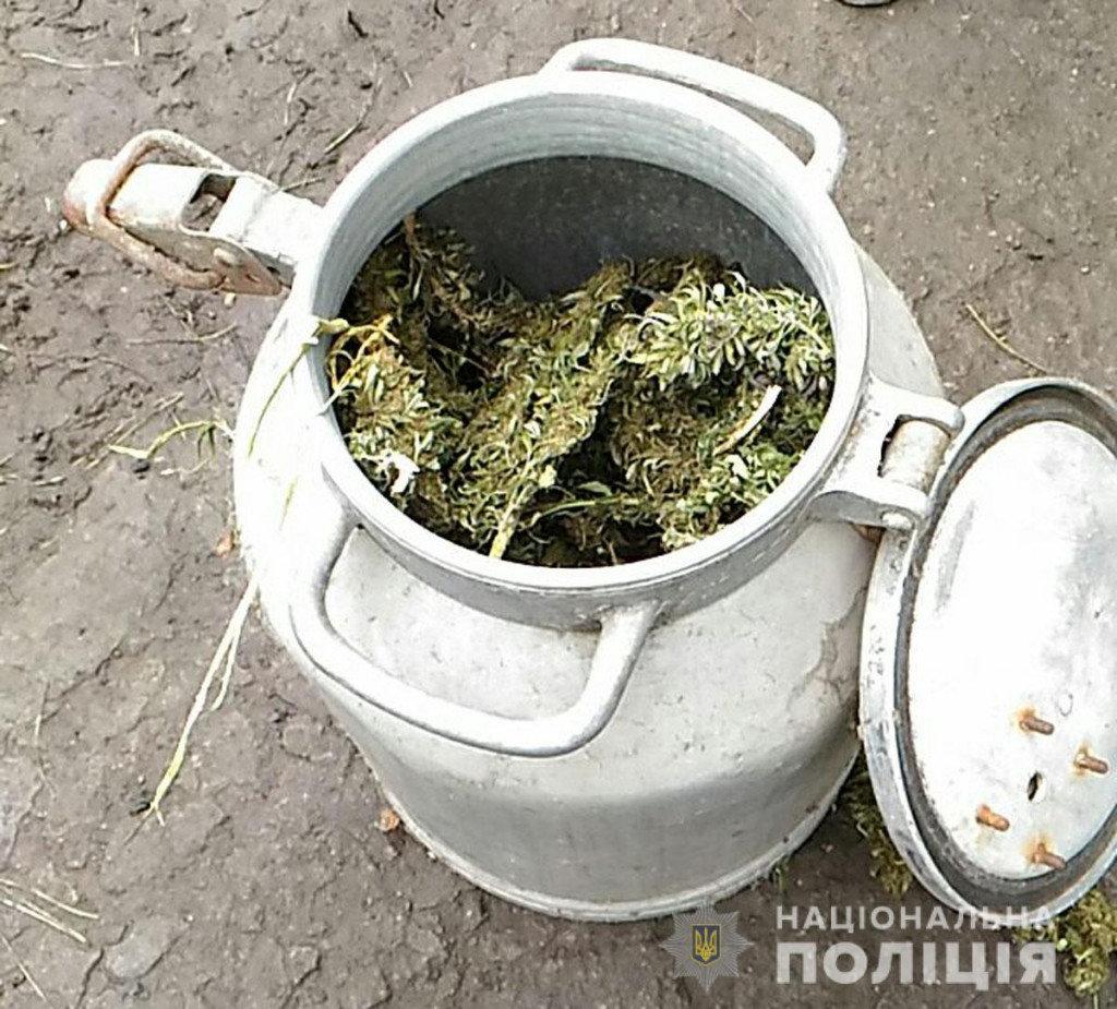 Марихуана на 300 тысяч гривен: мариуполец на дому наладил производство наркотиков, - ФОТО, фото-3
