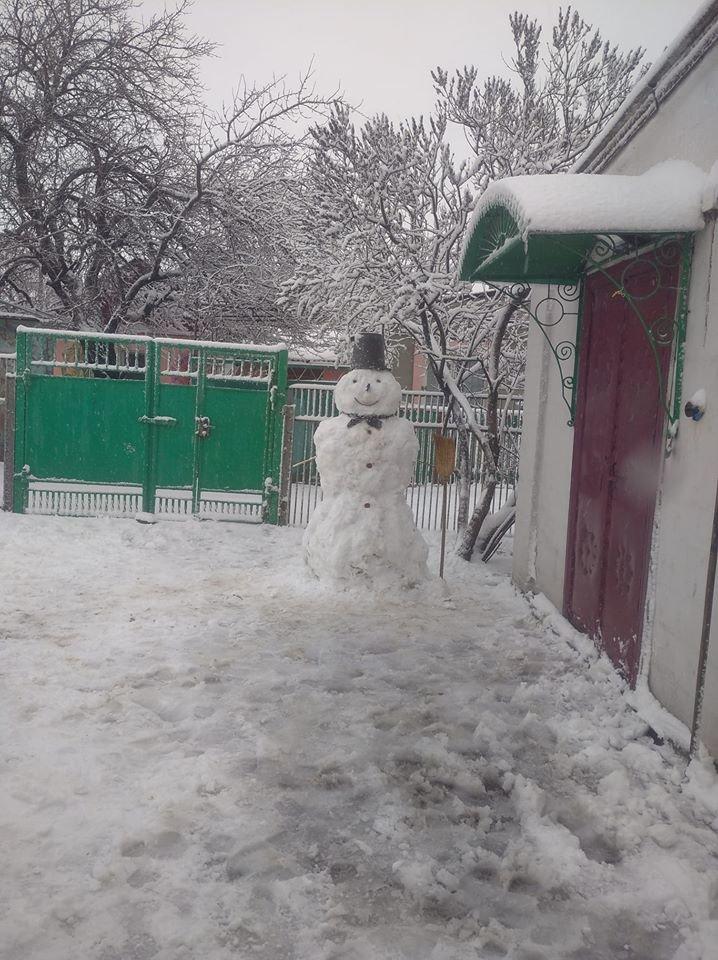 """Мариупольцы представили свои творения на """"Параде  снеговиков"""",- ФОТО, фото-24"""