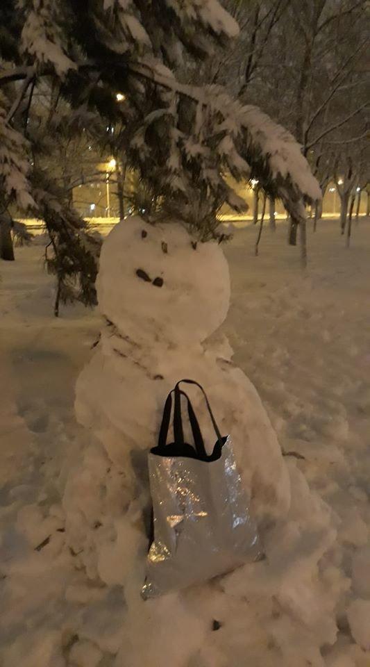 """Мариупольцы представили свои творения на """"Параде  снеговиков"""",- ФОТО, фото-10"""