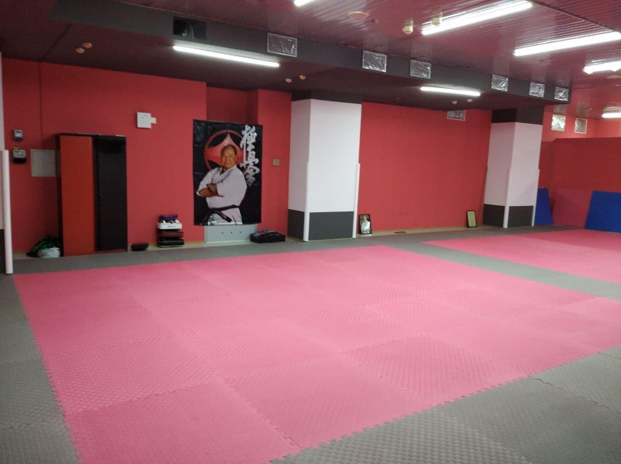 Единственная в Мариуполе спортивная школа восточных единоборств открывает свои двери для детей, фото-2