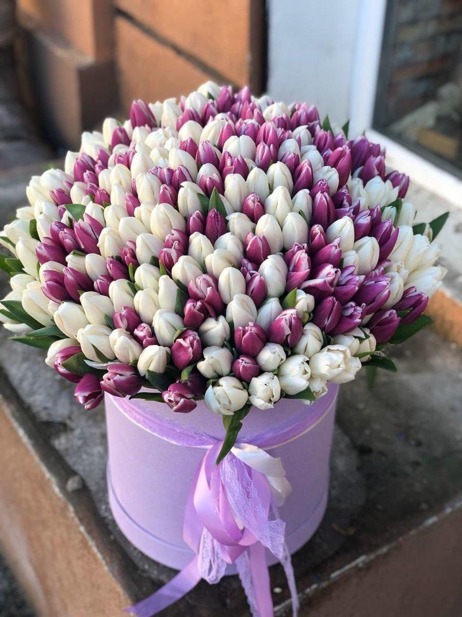 БЕСПЛАТНАЯ доставка голландских тюльпанов к вашему дому!, фото-15