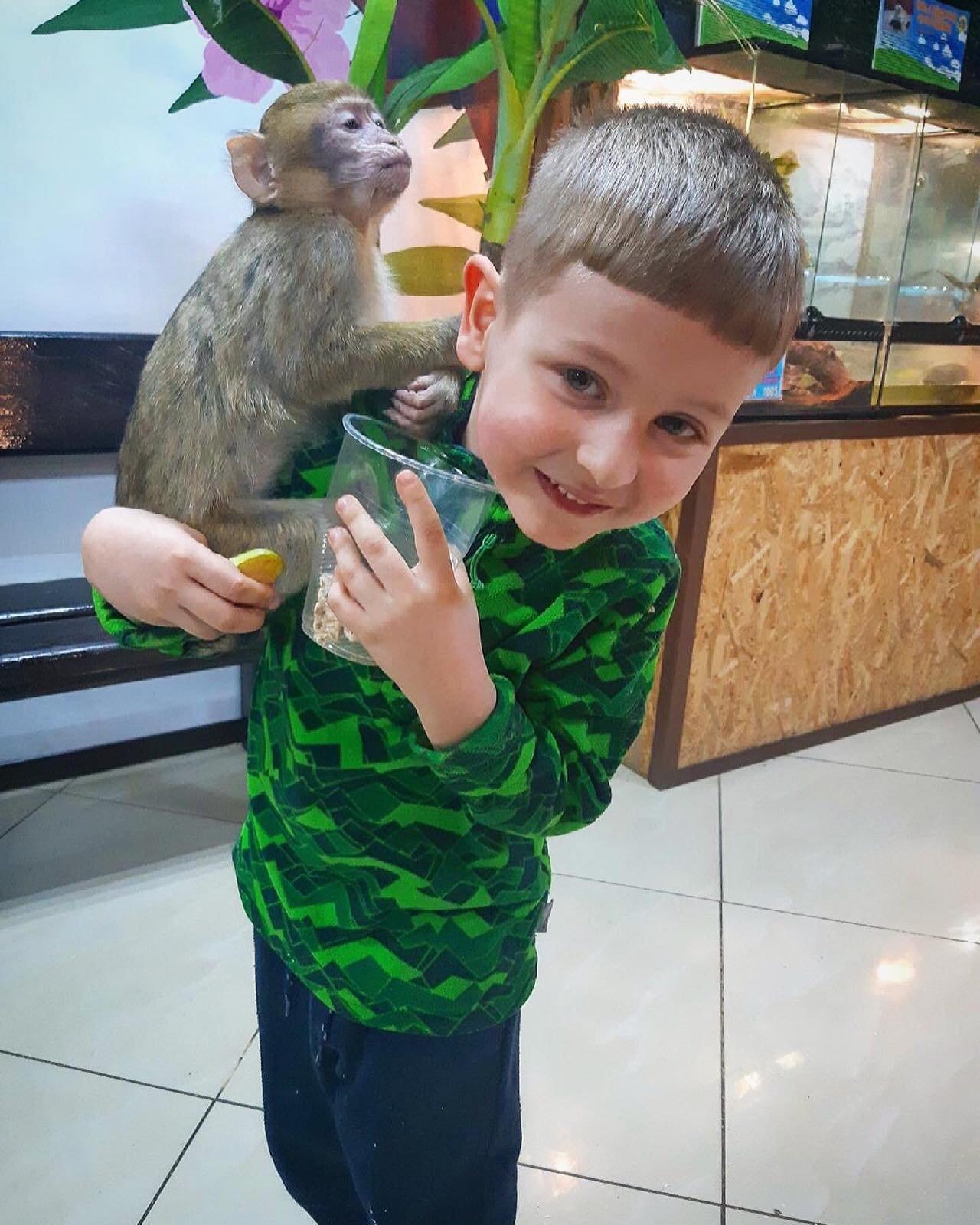 Контактный зоопарк просит помощи на время карантина!, фото-4