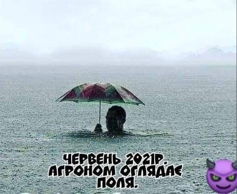 """""""Дождь идет каждый день, Карл!"""" Как мариупольцы отреагировали на непогоду, фото-8"""